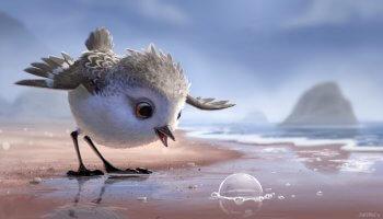 Der Vogel Piper