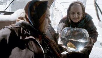 Zwei Damen steigen in das Taxi zu, die - einem alten Ritual folgend einen Goldfisch an einer heiligen Quelle aussetzen wollen. Taxi Teheran Film