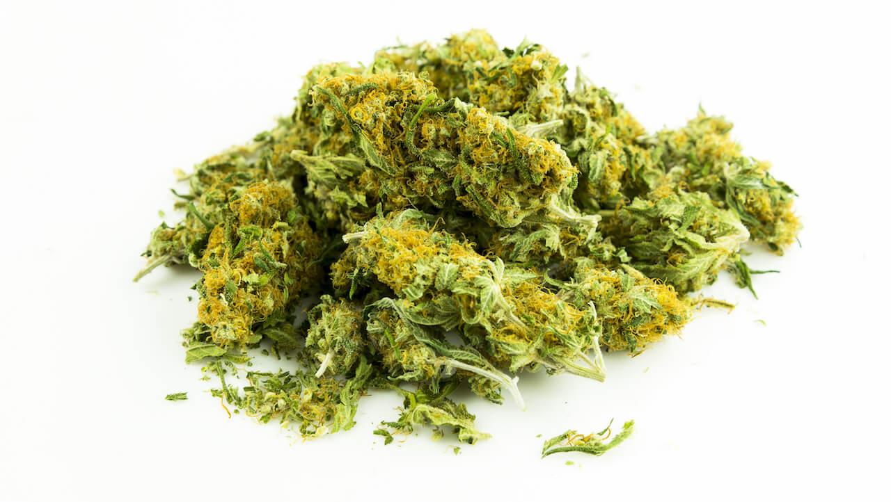 INFORMR Kiffen gegen Krankheit: Mehr Kontrolle dank Cannabis?