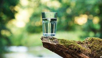 Fasten und Heilen Doku, Shutterstock Bild