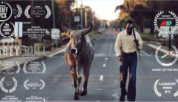"""""""Grey Bull"""" ist ein beeindruckender Kurzfilm über kulturelle Identität und den Wert von Traditionen."""