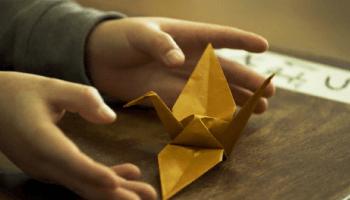 """Die Doku 'Der Origami-Code' zeigt neben kunstvollen Falttechniken inwiefern eine mathematische """"Weltformel"""" die Wissenschaft revolutionieren könnte."""