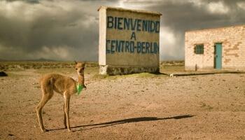 """Die Webdokumentation """"Worldwide Berlin"""" nimmt uns mit auf eine kuriose Entdeckungsreise."""